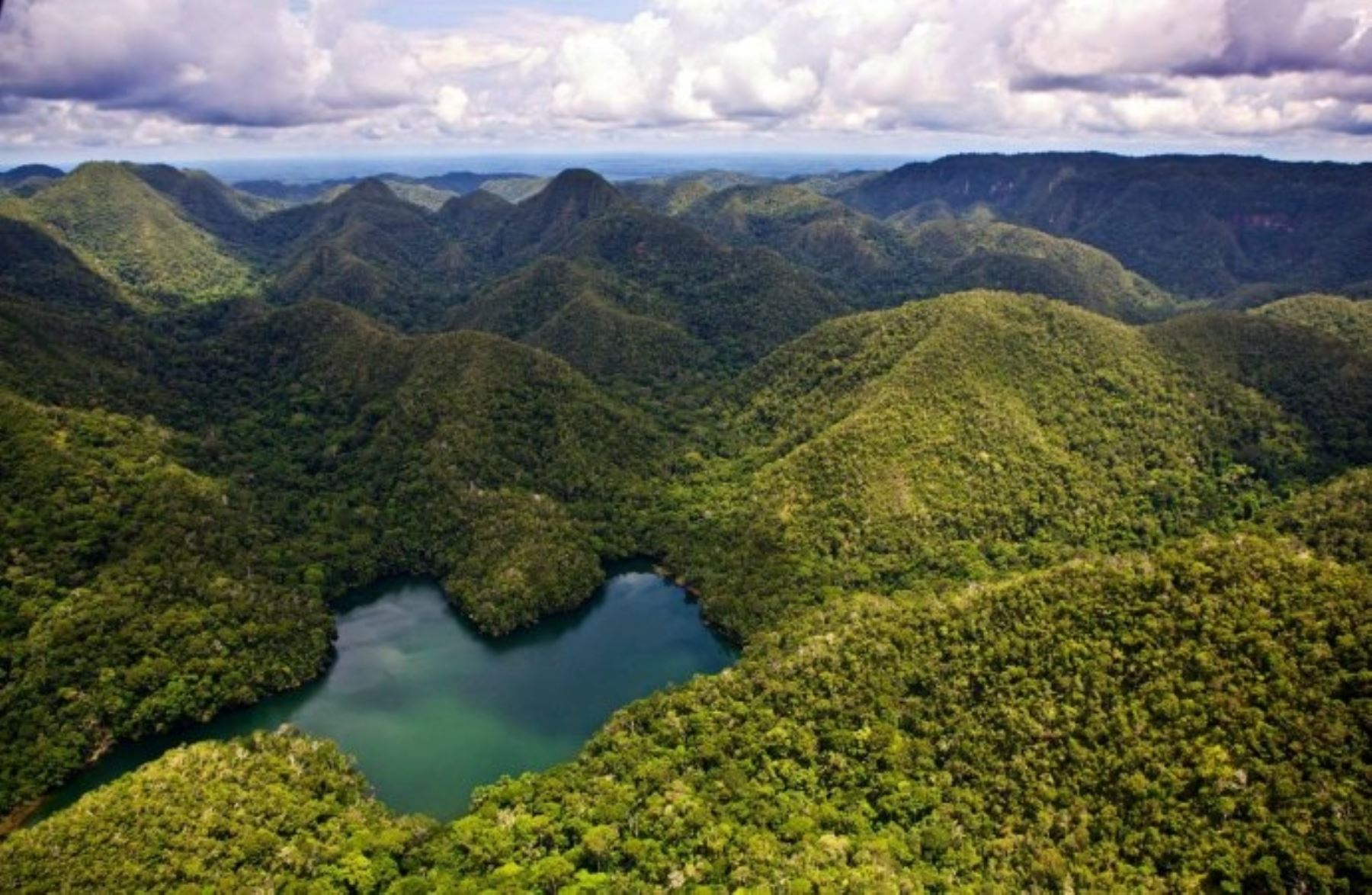 I petrolieri fanno un passo indietro: salva una fetta di Amazzonia in Perù
