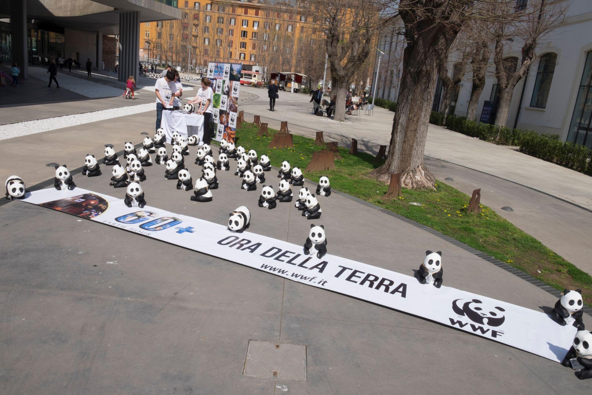 WWF: «Sempre più veloce la sesta estinzione di massa»