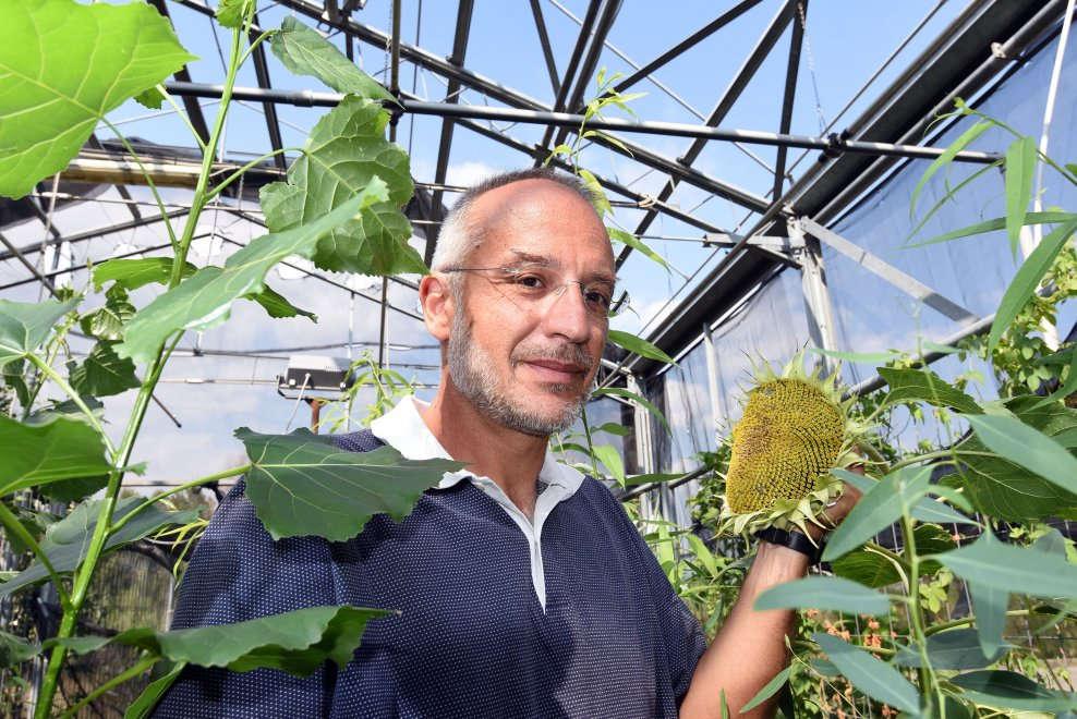 La rivoluzione inizia dalle piante