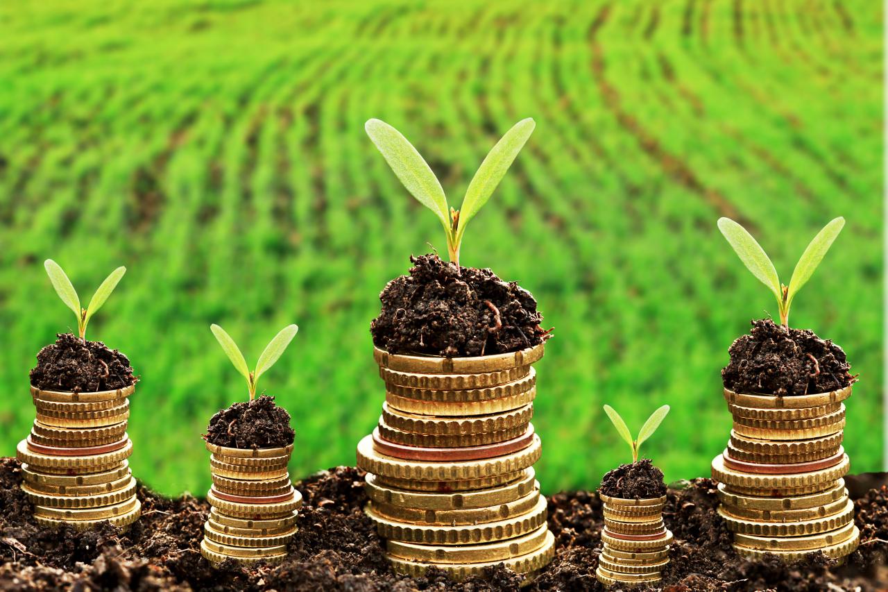 Banca Etica conferma la sua solidità: «Per un'economia reale e solidale»