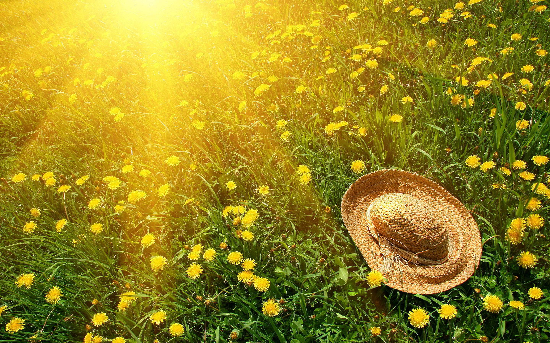 Si avvicina l'estate nel paese del sole. Che però non usa il solare termico