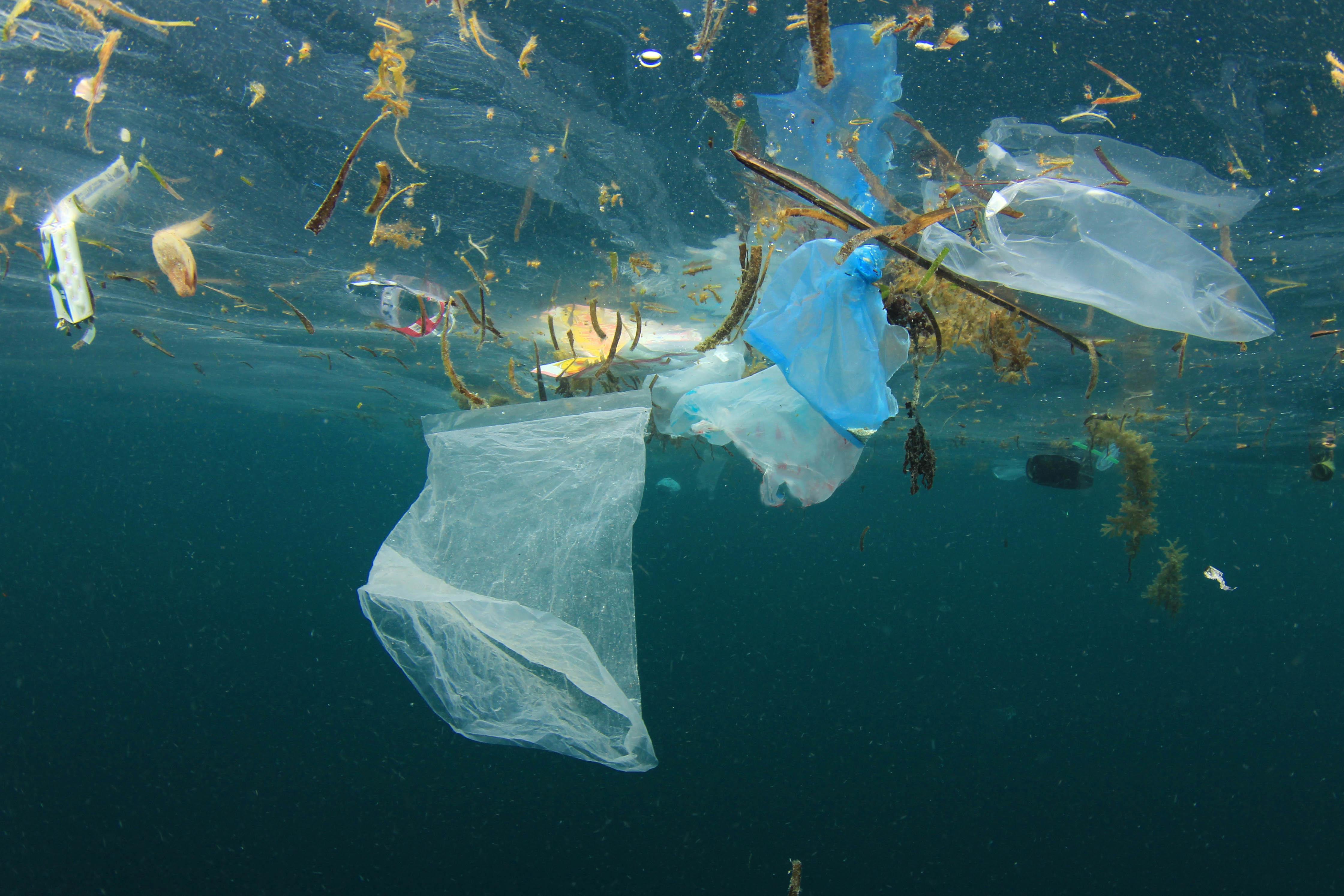 Il Mediterraneo in una trappola... di plastica