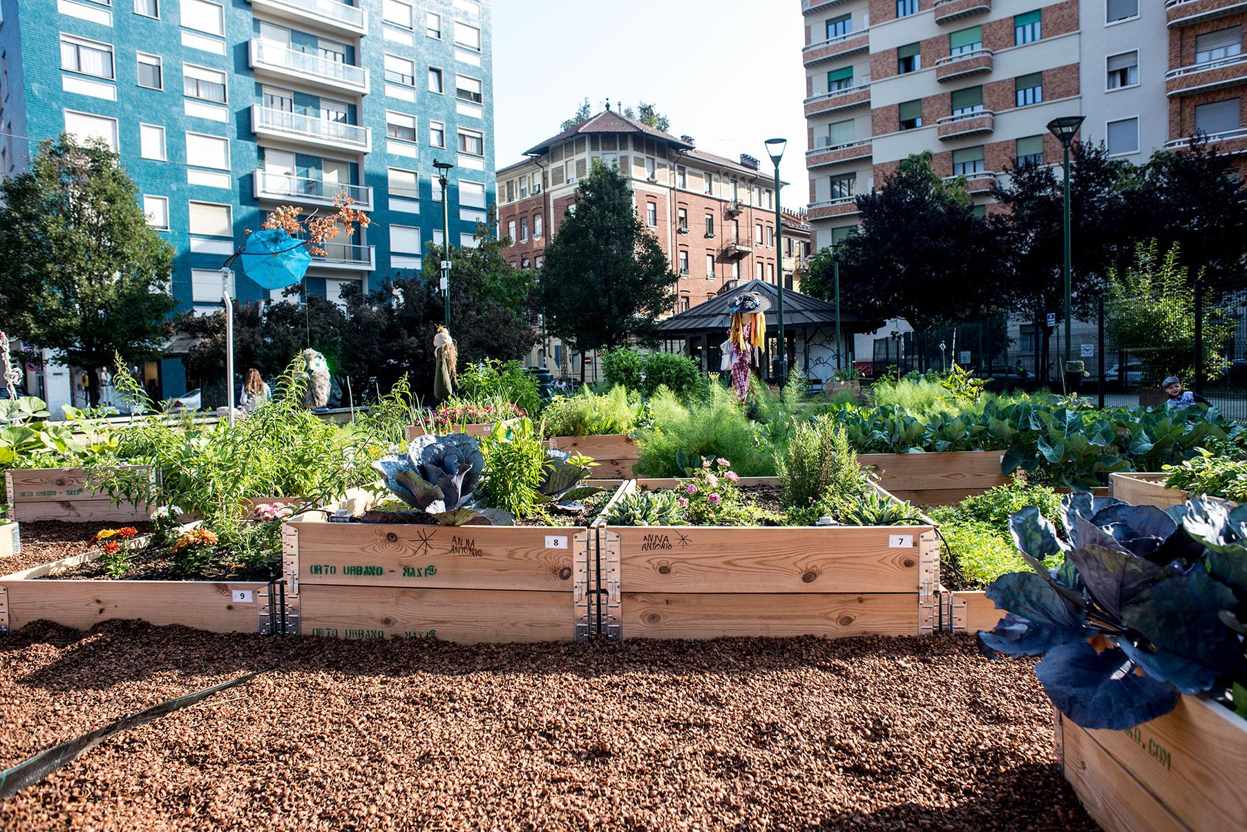 Gli orti urbani fanno bene all'ambiente, alla società e all'economia