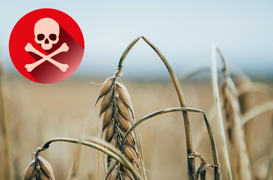 Le associazioni: «La Regione Toscana autorizza sostanze tossiche e nocive nelle aree di captazione delle acque sotterranee»